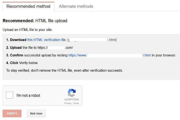 Pannello con le istruzioni per la verifica dell'autorizzazione a gestire il sito